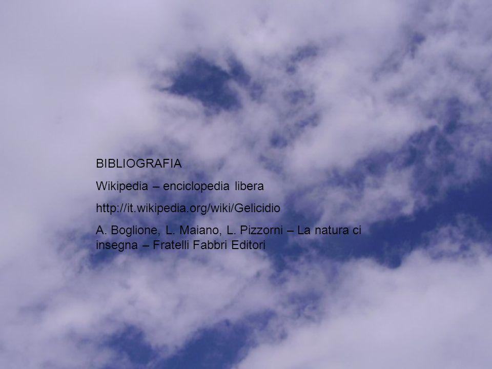 BIBLIOGRAFIA Wikipedia – enciclopedia libera. http://it.wikipedia.org/wiki/Gelicidio.
