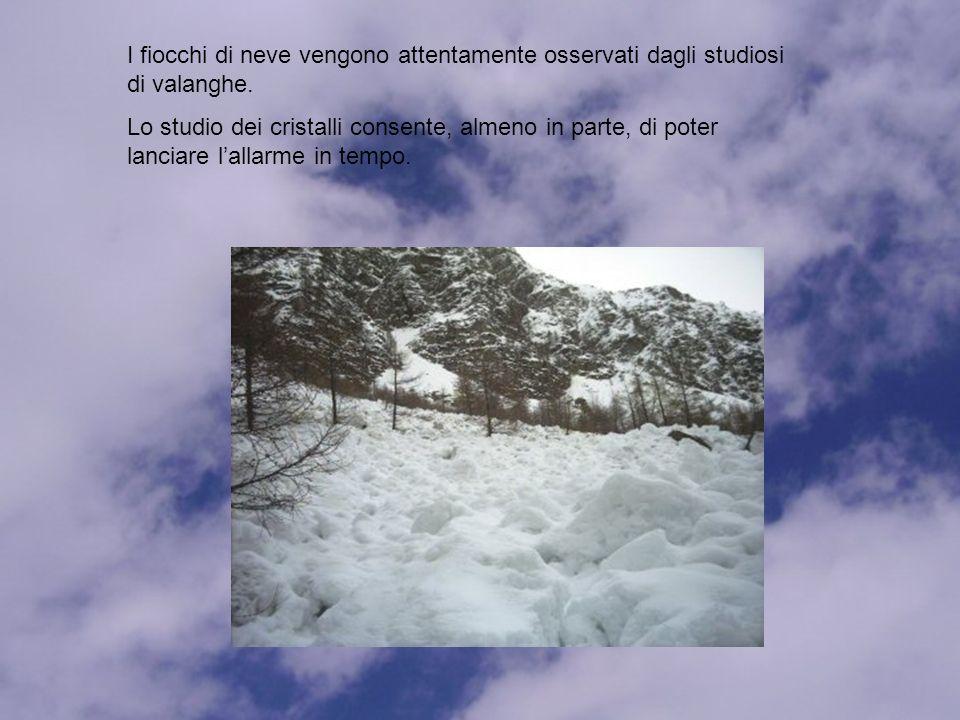 I fiocchi di neve vengono attentamente osservati dagli studiosi di valanghe.