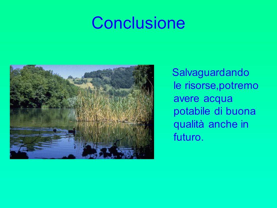Conclusione Salvaguardando le risorse,potremo avere acqua potabile di buona qualità anche in futuro.