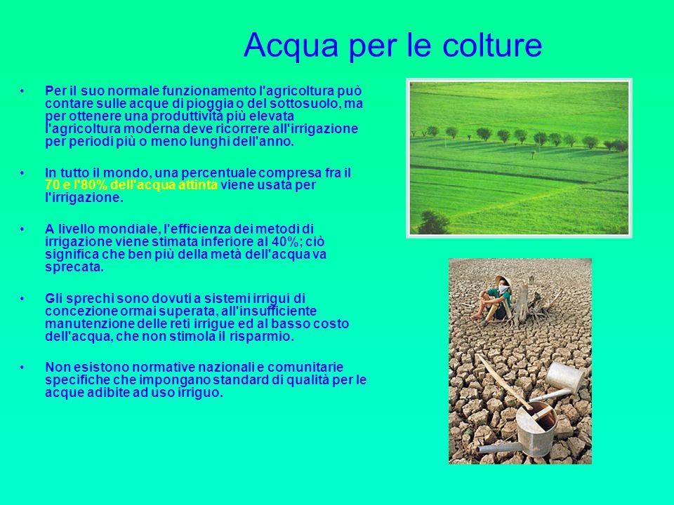 Acqua per le colture