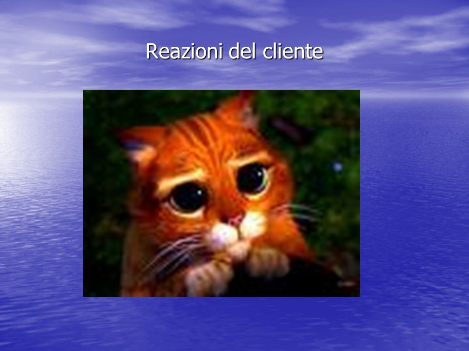 Reazioni del cliente
