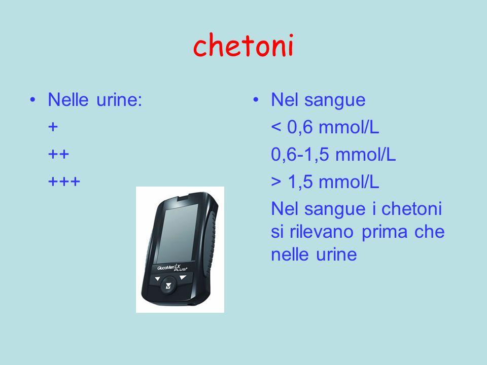 chetoni Nelle urine: + ++ +++ Nel sangue < 0,6 mmol/L