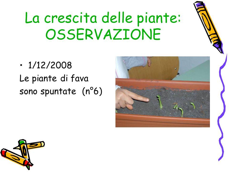 La crescita delle piante: OSSERVAZIONE