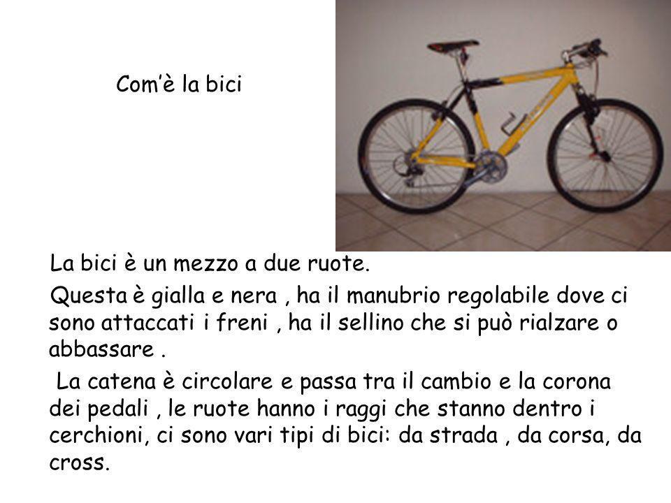 Com'è la bici La bici è un mezzo a due ruote.