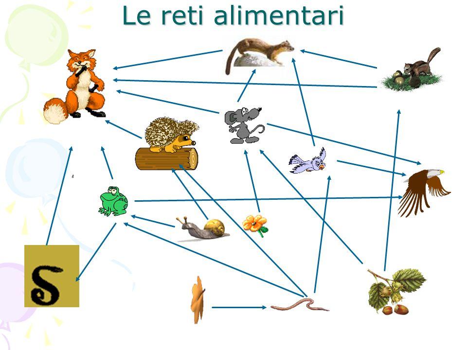 Le reti alimentari