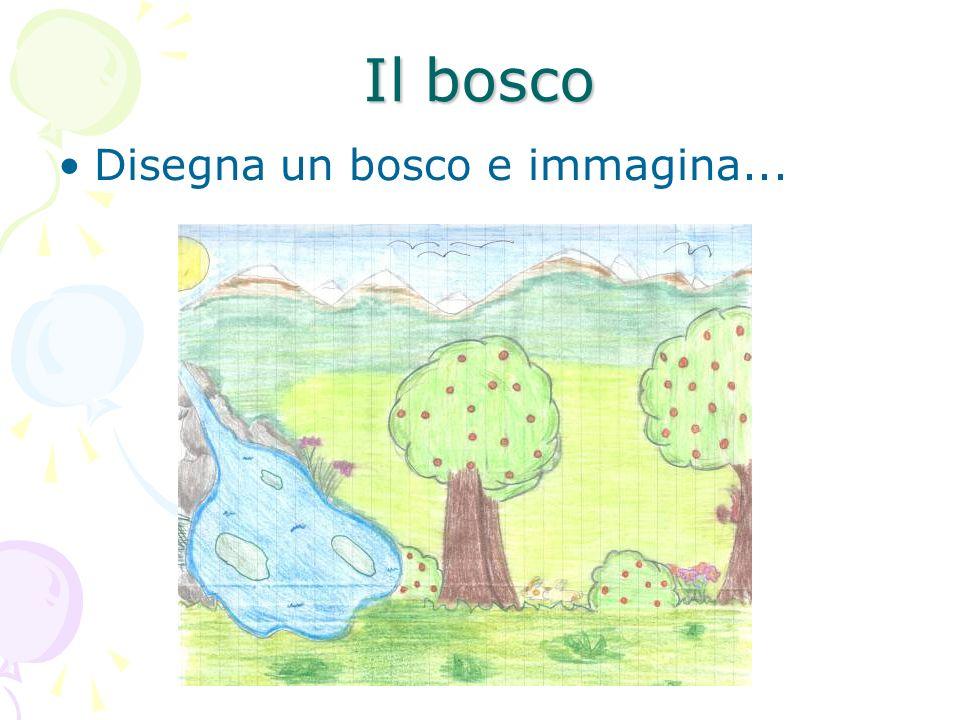 Il bosco Disegna un bosco e immagina...