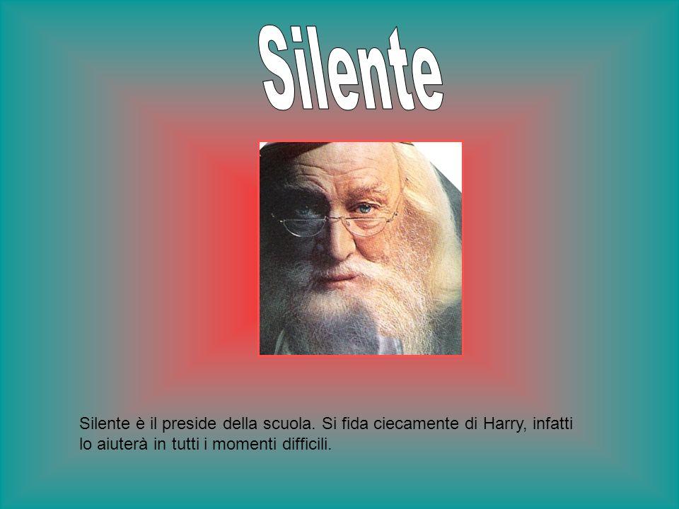 Silente Silente è il preside della scuola.
