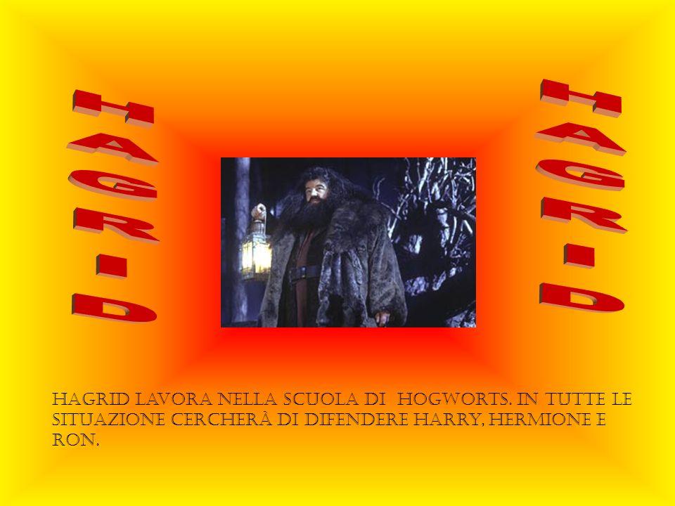 HAGRID HAGRID. HAgrid lavora nella scuola di Hogworts.