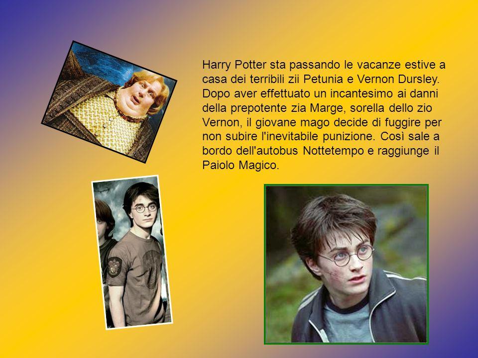 Harry Potter sta passando le vacanze estive a casa dei terribili zii Petunia e Vernon Dursley.