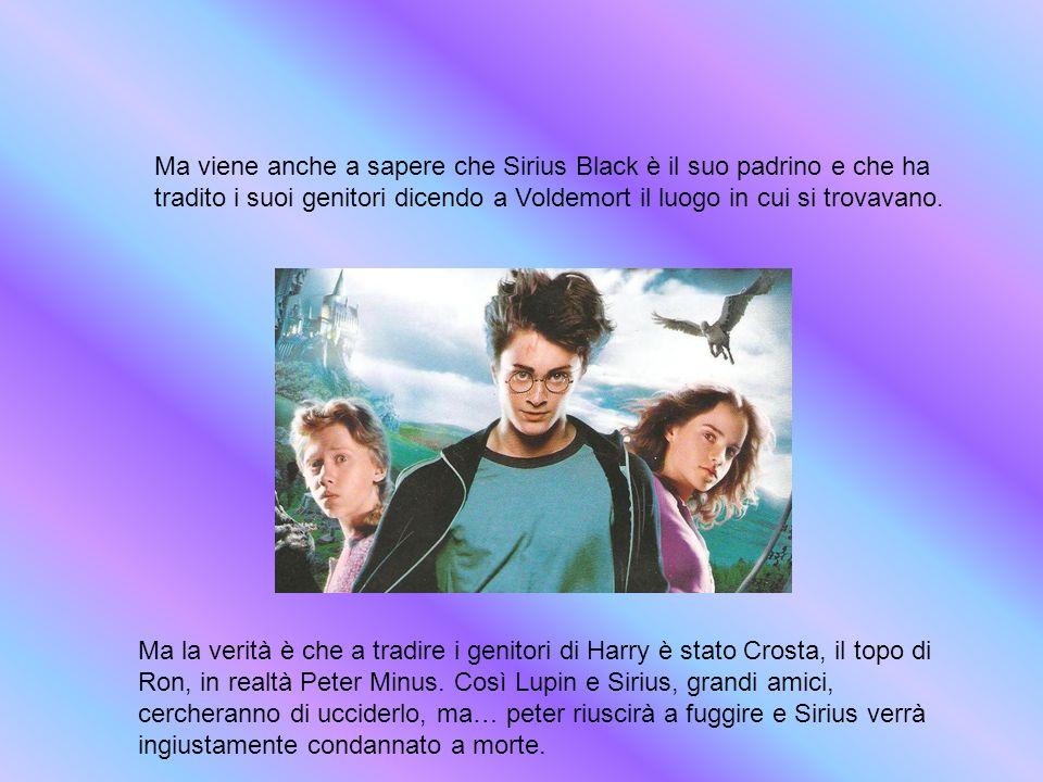 Ma viene anche a sapere che Sirius Black è il suo padrino e che ha tradito i suoi genitori dicendo a Voldemort il luogo in cui si trovavano.