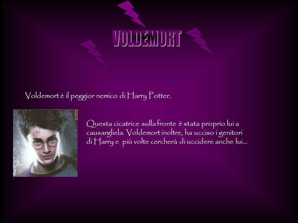 VOLDEMORT Voldemort è il peggior nemico di Harry Potter.