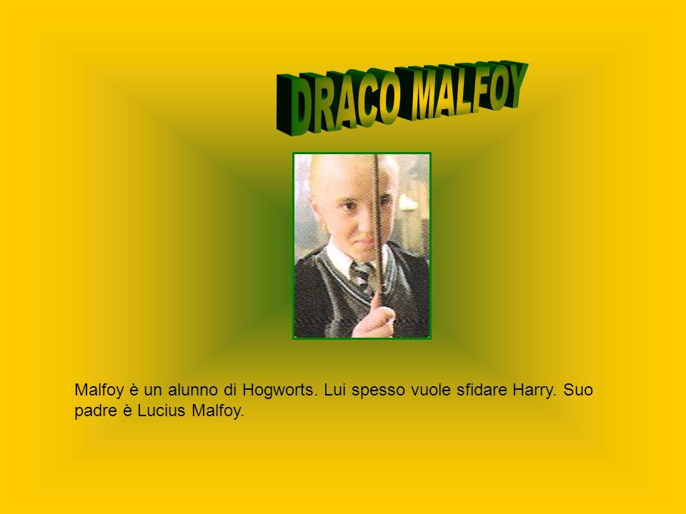 DRACO MALFOY Malfoy è un alunno di Hogworts. Lui spesso vuole sfidare Harry.