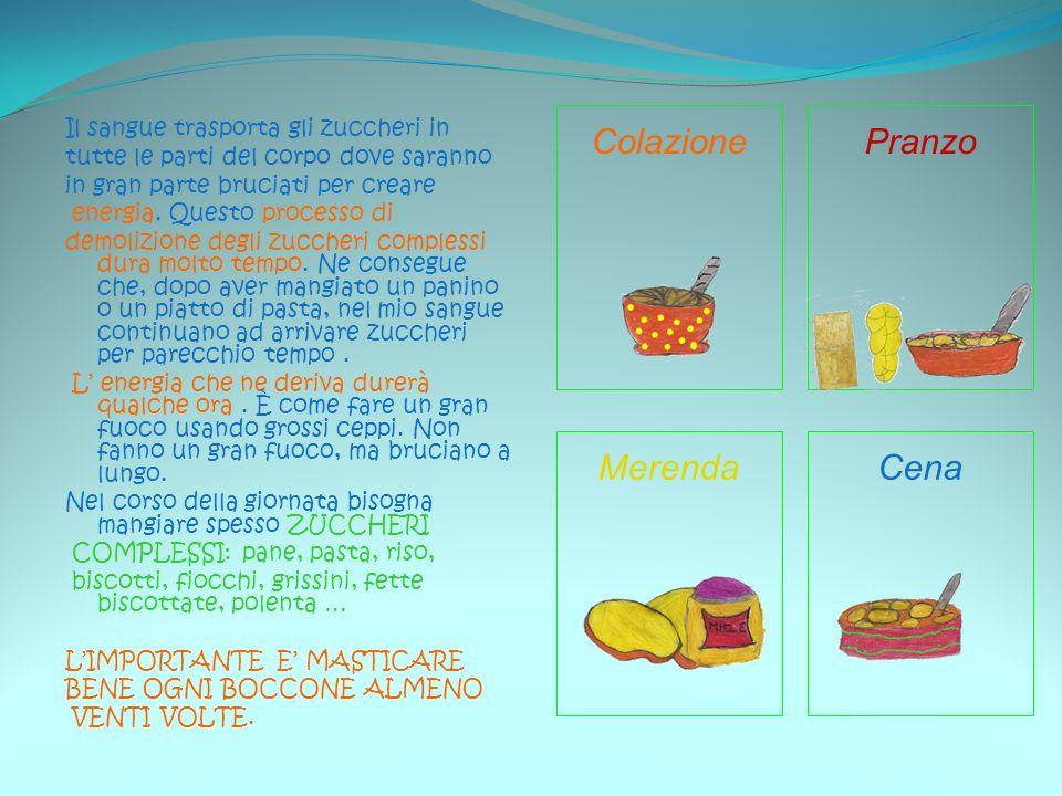 Colazione Pranzo Merenda Cena Il sangue trasporta gli zuccheri in