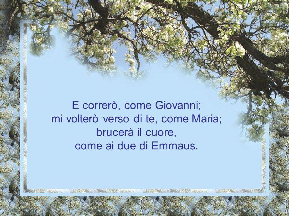 E correrò, come Giovanni; mi volterò verso di te, come Maria; brucerà il cuore, come ai due di Emmaus.