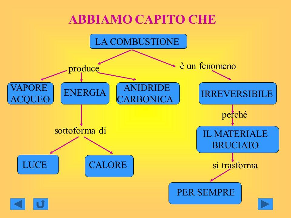 ABBIAMO CAPITO CHE LA COMBUSTIONE è un fenomeno produce VAPORE ACQUEO