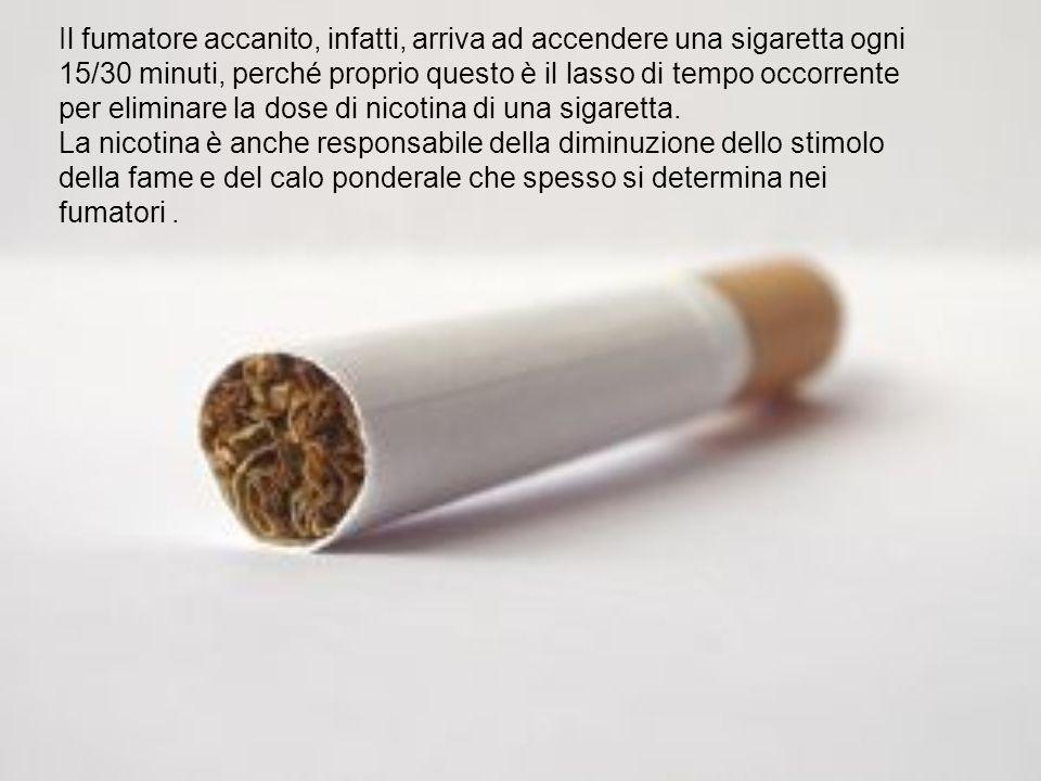 Il fumatore accanito, infatti, arriva ad accendere una sigaretta ogni 15/30 minuti, perché proprio questo è il lasso di tempo occorrente per eliminare la dose di nicotina di una sigaretta.