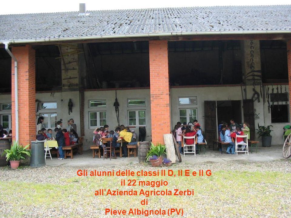 Gli alunni delle classi II D, II E e II G all'Azienda Agricola Zerbi
