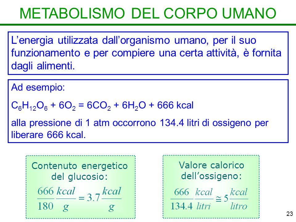 METABOLISMO DEL CORPO UMANO