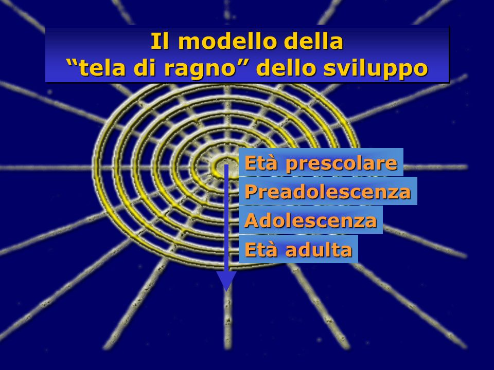 Il modello della tela di ragno dello sviluppo