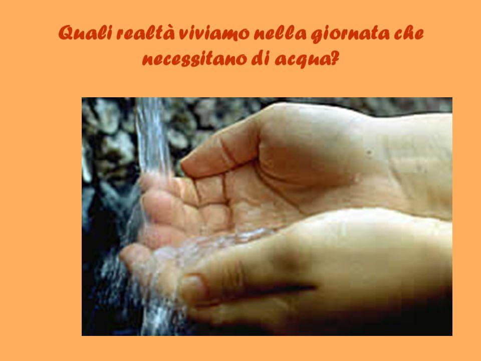 Quali realtà viviamo nella giornata che necessitano di acqua
