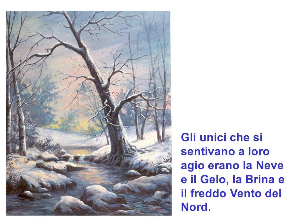 Gli unici che si sentivano a loro agio erano la Neve e il Gelo, la Brina e il freddo Vento del Nord.