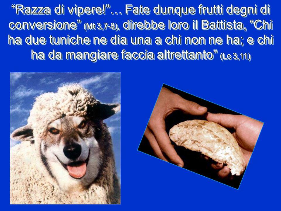 Razza di vipere! … Fate dunque frutti degni di conversione (Mt 3,7-8), direbbe loro il Battista, Chi ha due tuniche ne dia una a chi non ne ha; e chi ha da mangiare faccia altrettanto (Lc 3,11)