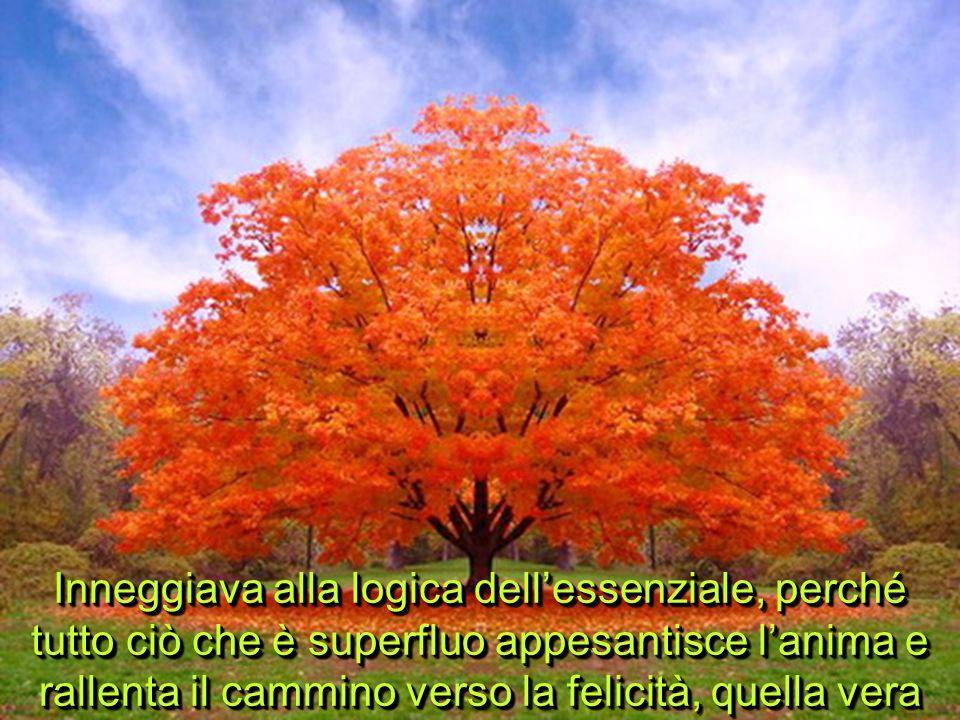 Inneggiava alla logica dell'essenziale, perché tutto ciò che è superfluo appesantisce l'anima e rallenta il cammino verso la felicità, quella vera