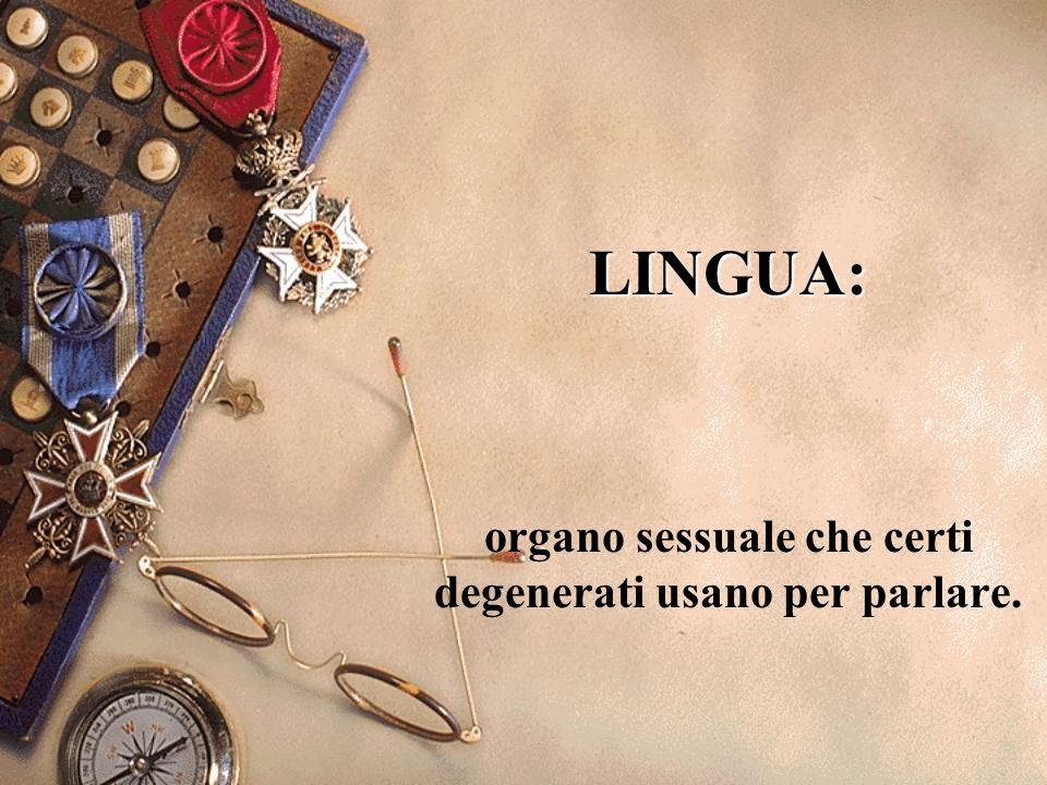 organo sessuale che certi degenerati usano per parlare.