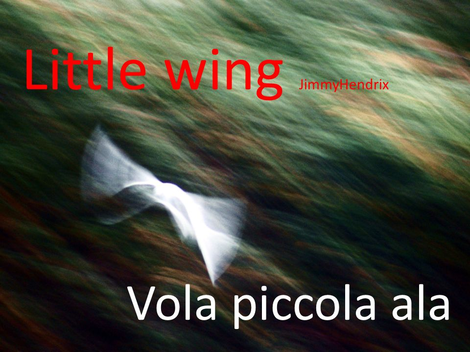 Little wing JimmyHendrix
