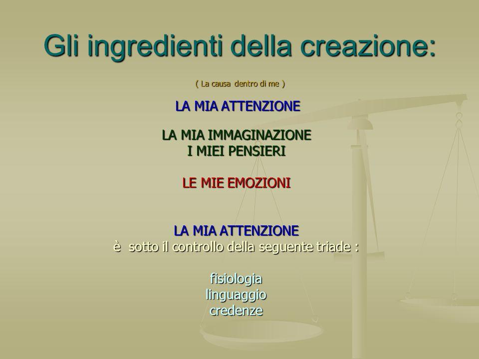 Gli ingredienti della creazione: