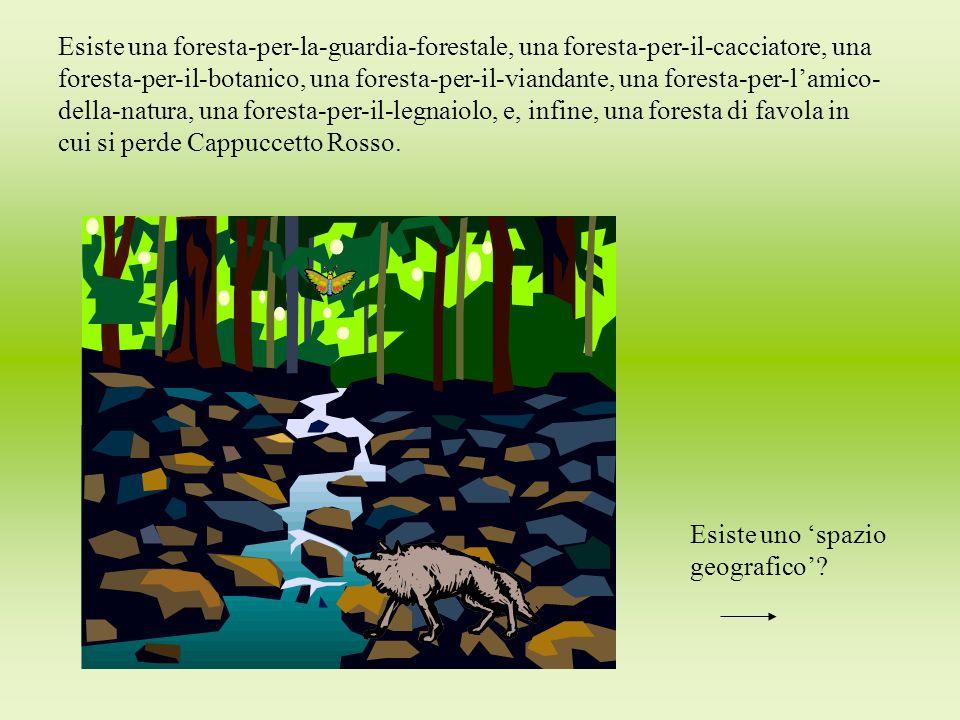 Esiste una foresta-per-la-guardia-forestale, una foresta-per-il-cacciatore, una foresta-per-il-botanico, una foresta-per-il-viandante, una foresta-per-l'amico- della-natura, una foresta-per-il-legnaiolo, e, infine, una foresta di favola in cui si perde Cappuccetto Rosso.