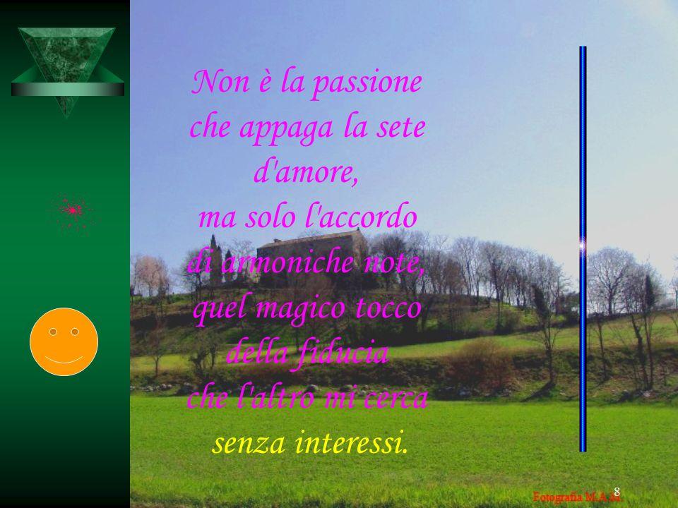 Non è la passione che appaga la sete. d amore, ma solo l accordo. di armoniche note, quel magico tocco.