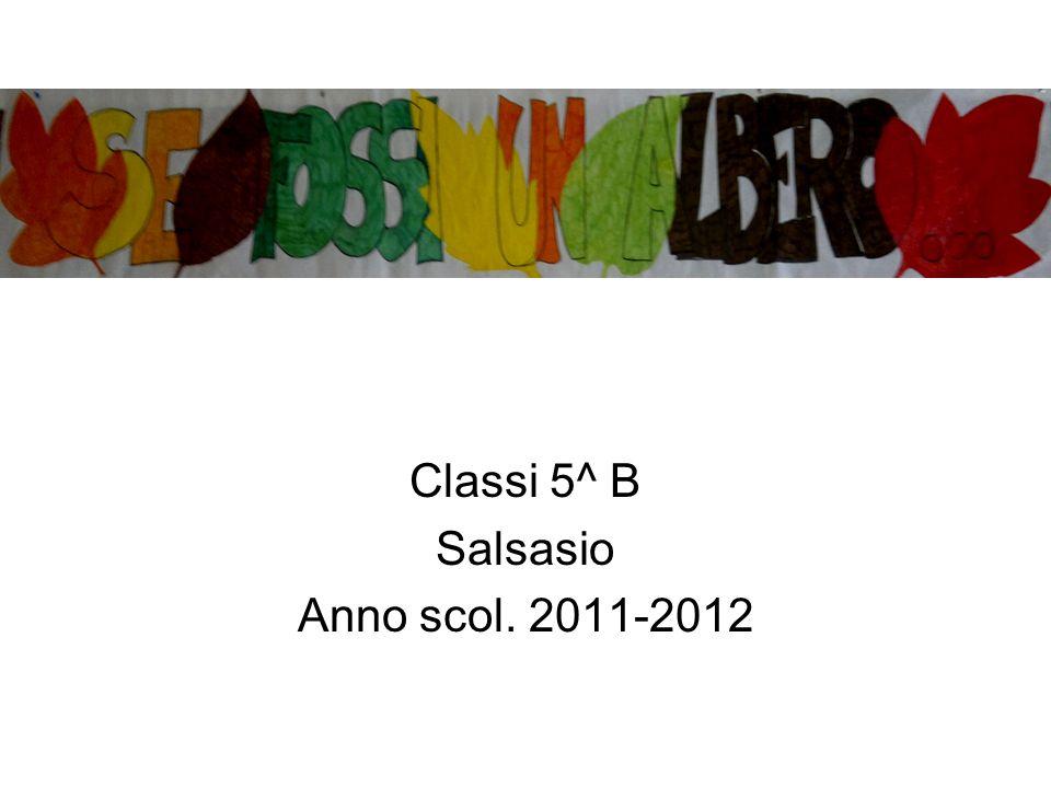 Classi 5^ B Salsasio Anno scol. 2011-2012