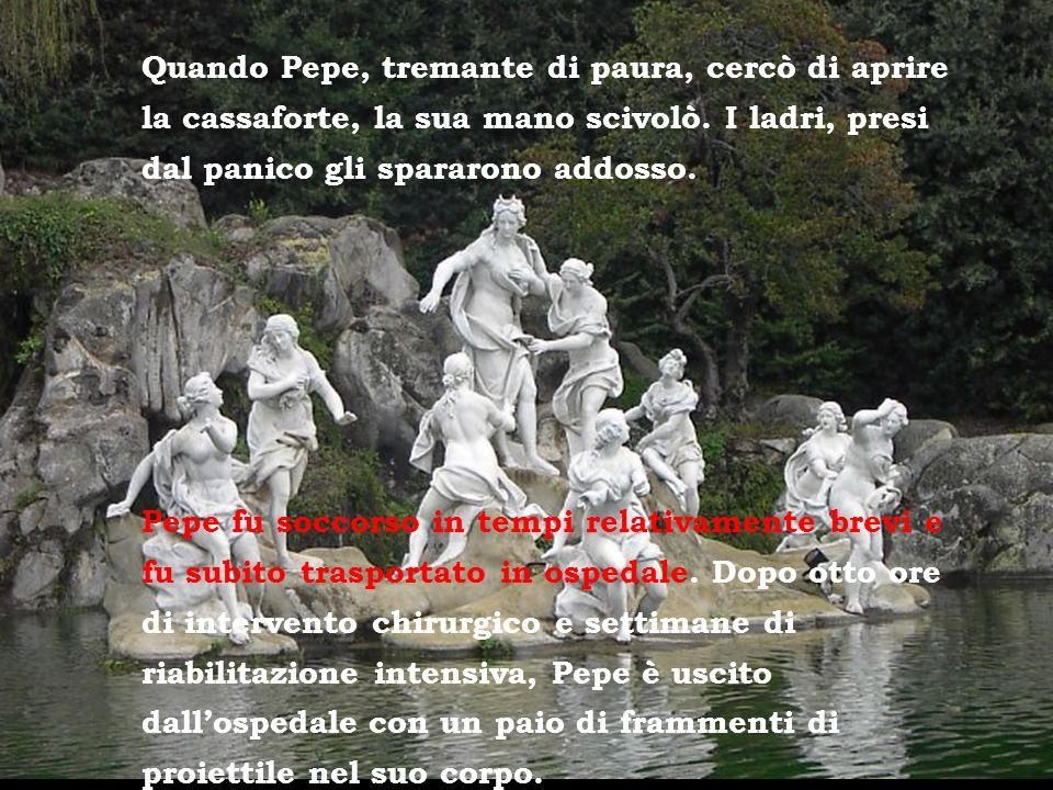 Quando Pepe, tremante di paura, cercò di aprire la cassaforte, la sua mano scivolò. I ladri, presi dal panico gli spararono addosso.