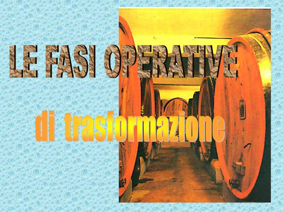 LE FASI OPERATIVE di trasformazione