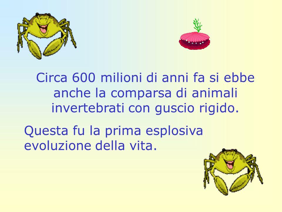 Circa 600 milioni di anni fa si ebbe anche la comparsa di animali invertebrati con guscio rigido.