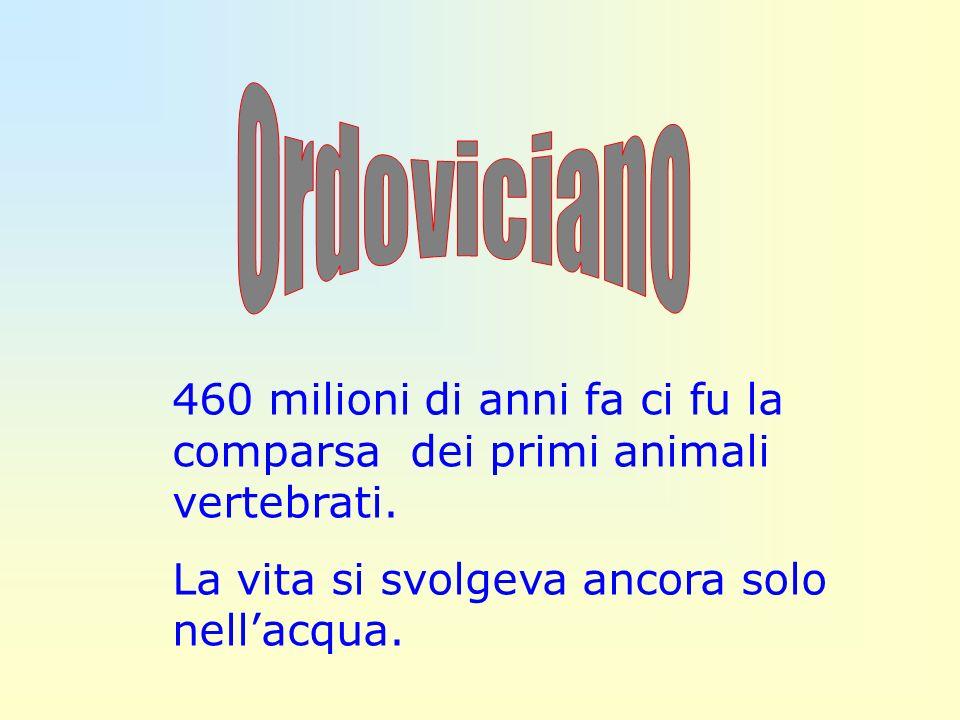 Ordoviciano 460 milioni di anni fa ci fu la comparsa dei primi animali vertebrati.