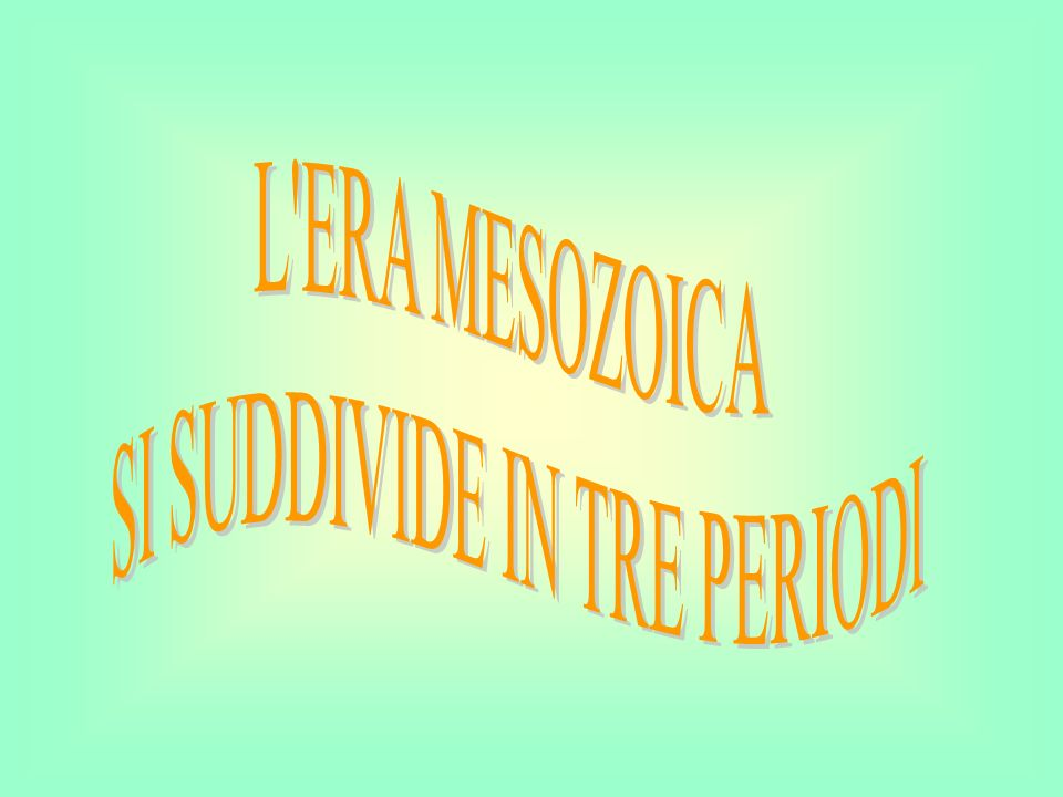 SI SUDDIVIDE IN TRE PERIODI
