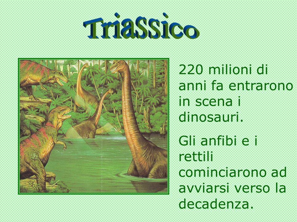 Triassico 220 milioni di anni fa entrarono in scena i dinosauri.