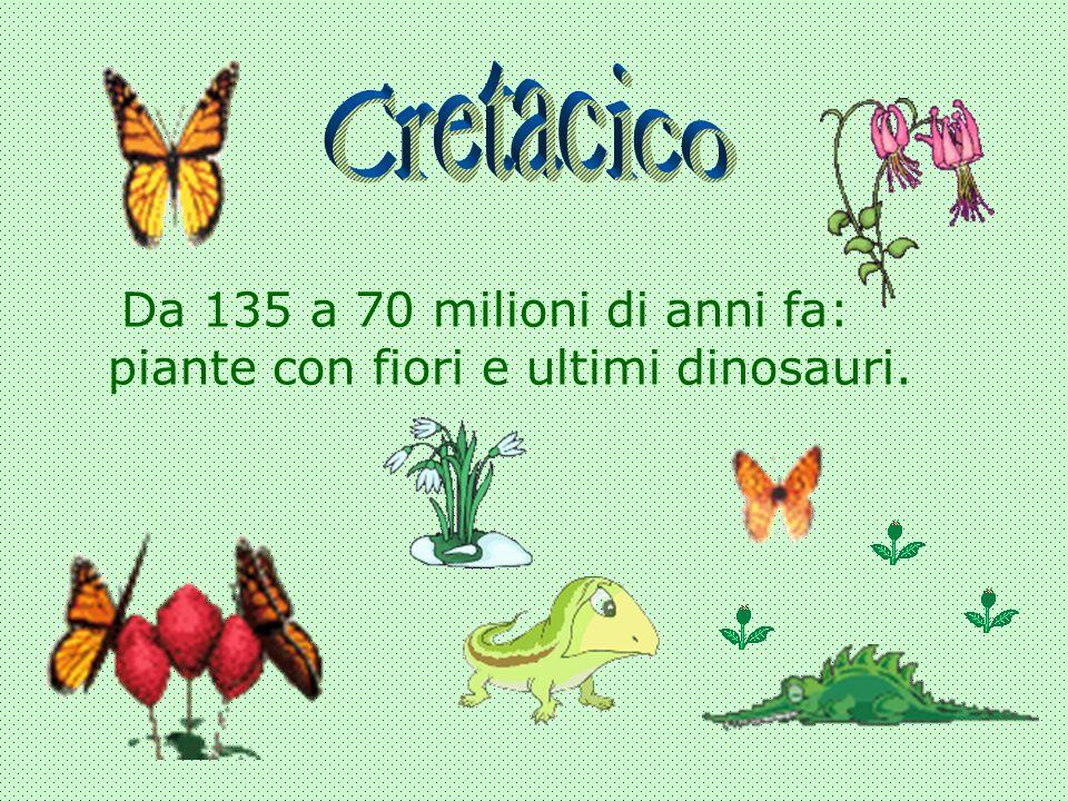 Cretacico Da 135 a 70 milioni di anni fa: piante con fiori e ultimi dinosauri.