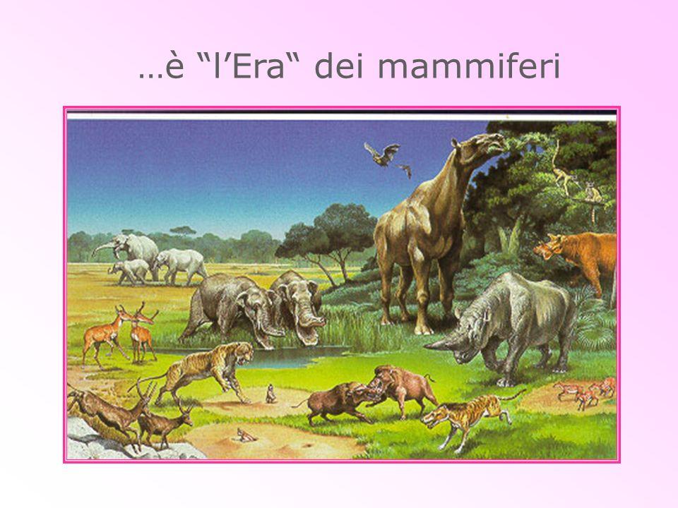 …è l'Era dei mammiferi