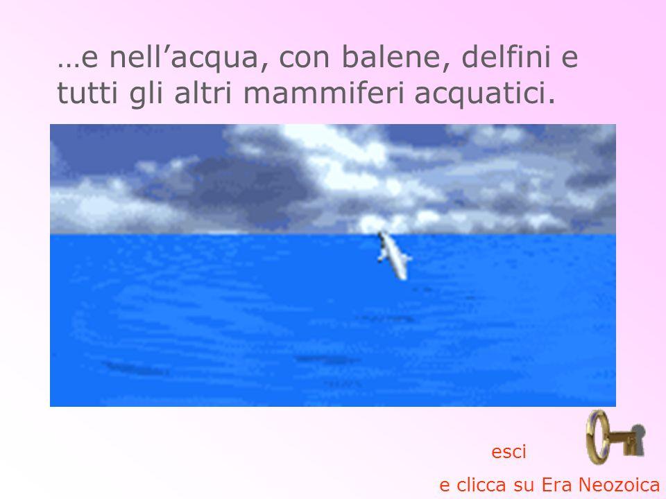 …e nell'acqua, con balene, delfini e tutti gli altri mammiferi acquatici.