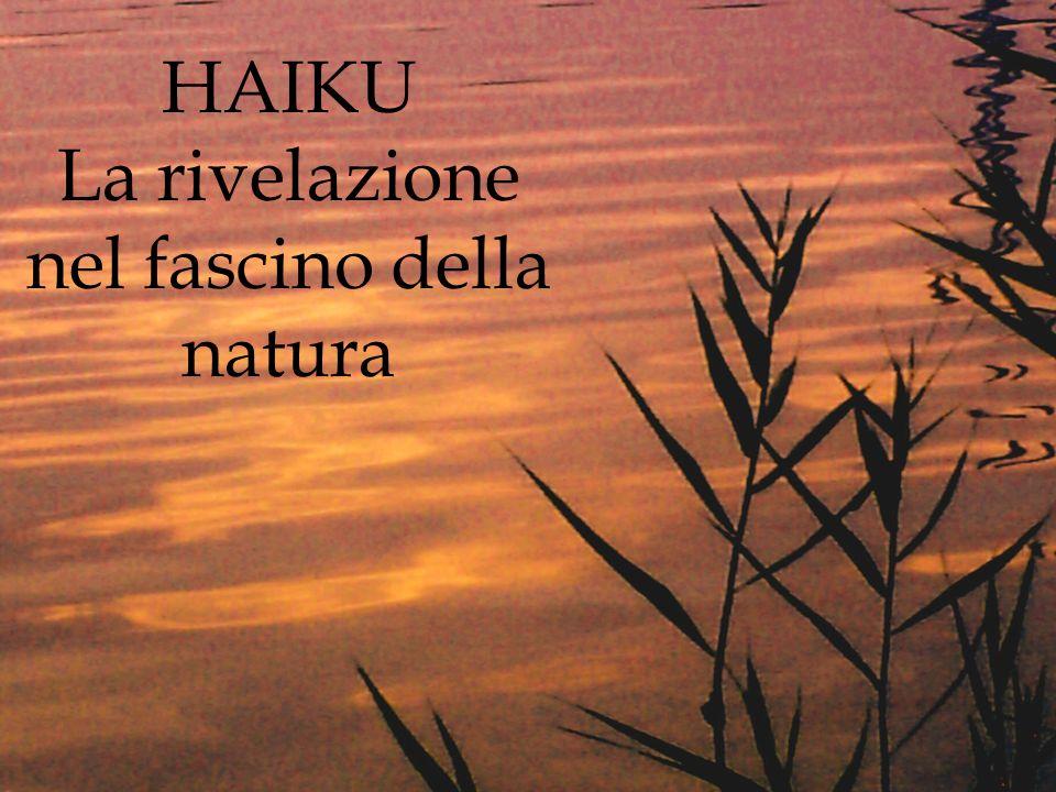 La rivelazione nel fascino della natura