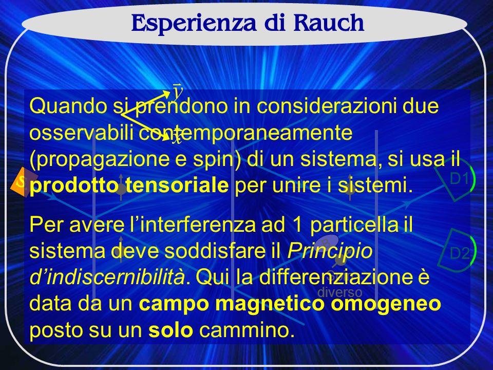 Esperienza di Rauch