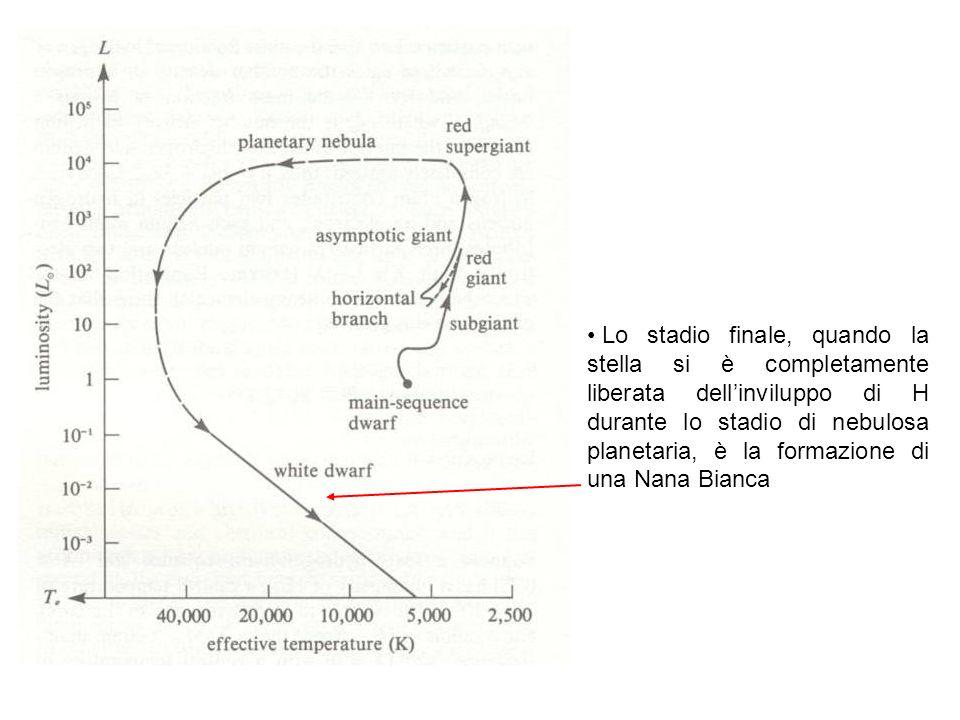 Lo stadio finale, quando la stella si è completamente liberata dell'inviluppo di H durante lo stadio di nebulosa planetaria, è la formazione di una Nana Bianca