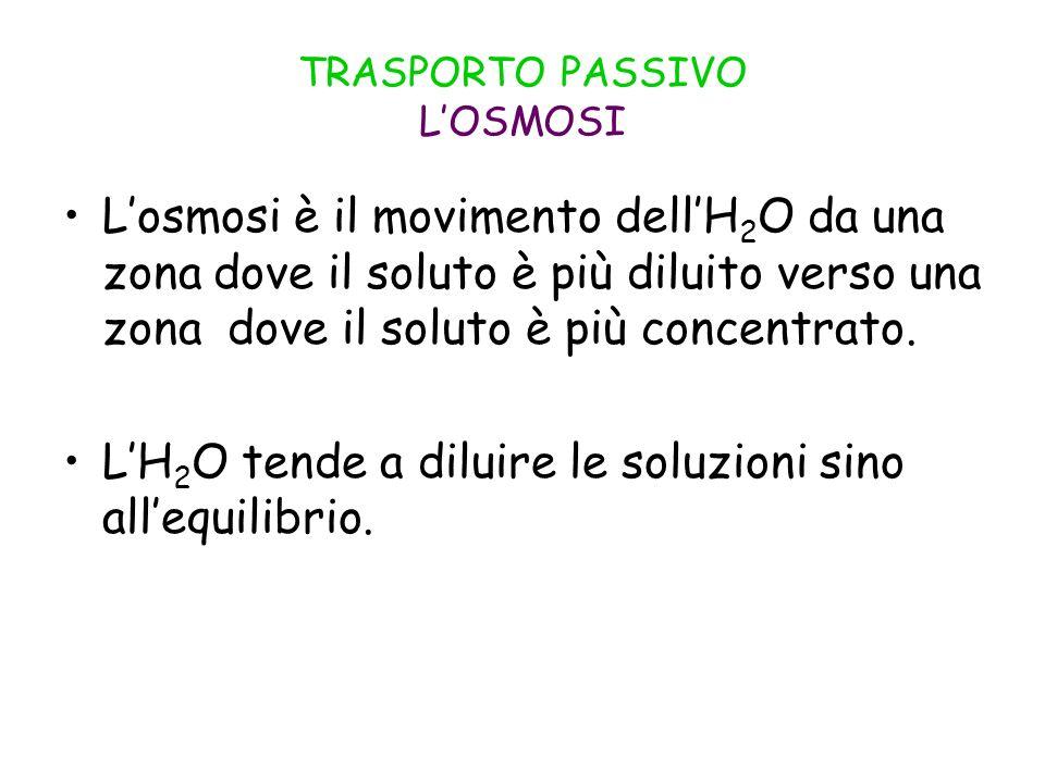 TRASPORTO PASSIVO L'OSMOSI
