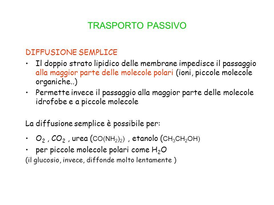 TRASPORTO PASSIVO DIFFUSIONE SEMPLICE