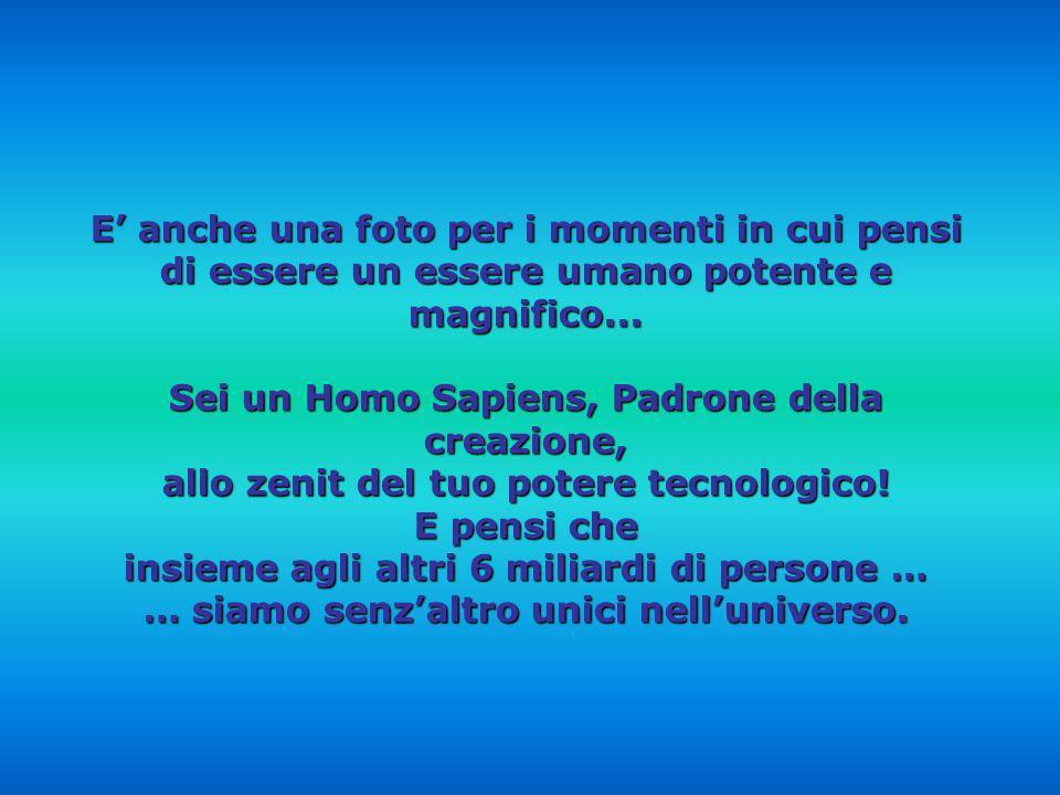 Sei un Homo Sapiens, Padrone della creazione,