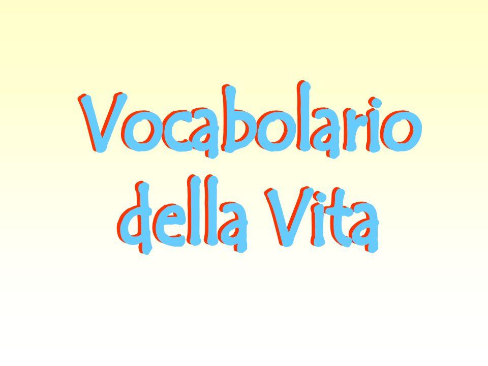 Vocabolario della Vita
