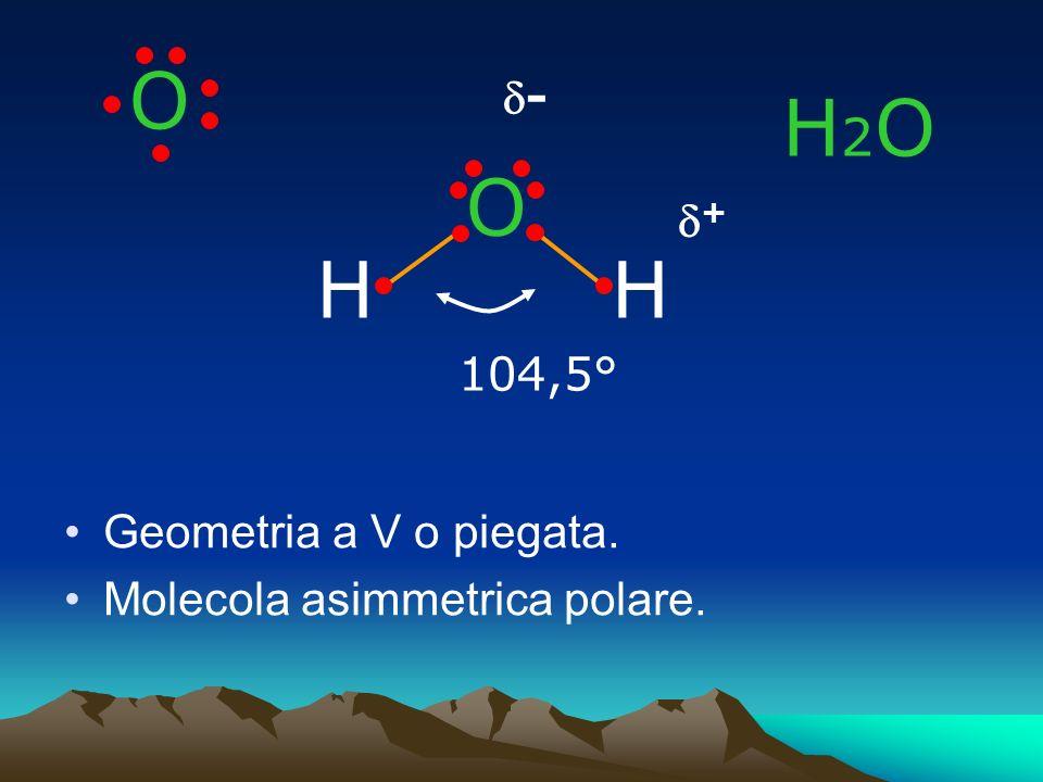 O H2O O H H d- d+ 104,5° Geometria a V o piegata.